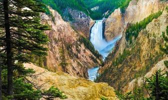 Canyon Falls, Yellowstone-Nationalpark. foto