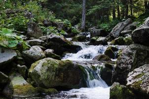 Retezat Nationalpark, Rumänien foto