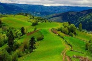 Zaun auf Hangwiese im Berg foto