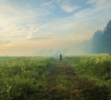 Person, die auf dem Weg in der verträumten Landschaft geht