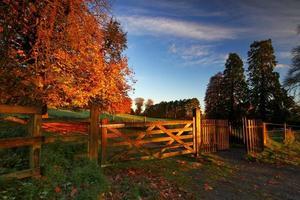 irischer Herbst foto