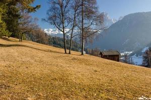 Berghütte im Tal der Kiefernwälder und schneebedeckten Gipfel foto