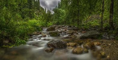 Gebirgsfluss im Wald, Panorama foto