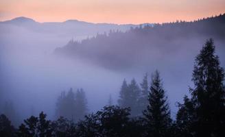 Nebel und Wolkengebirgstal Landschaft, foto