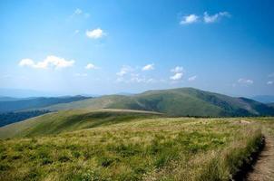 Karpatengebirgs-Sommerlandschaft mit grünen sonnigen Hügeln wi