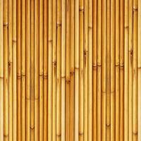 Bambuszaun Hintergrund foto