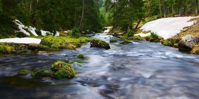 Wasser des Flusses fließt durch moosige Felsen und grüne Landschaft