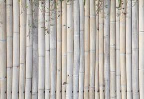 alter Bambuszaunhintergrund foto