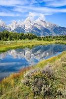 Blick auf Grand Teton Mountains mit Wasserreflexion und Blumen