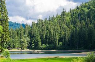 Landschaftsansicht der Karpaten mit Hügeln und Wolken
