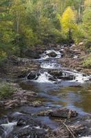 Amity Creek Schritt fällt foto
