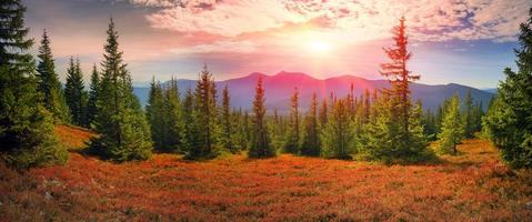alpiner Herbst in Gorgany