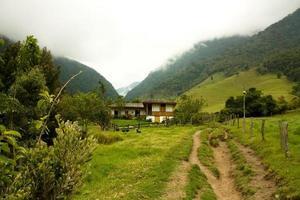 Weg durch Cocora-Tal foto