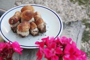 Teller mit frischen Steinpilzen mit roten Blüten