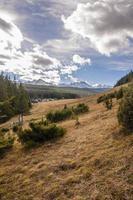 Lichtungsberg mit Bergen im Hintergrund foto