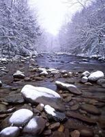 schneebedeckter Gebirgsbach foto