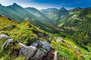 Morgendämmerung in den Bergen im Sommer