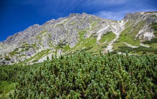 Hügel - Predne Solisko - in hohen Tatras, Slowakei