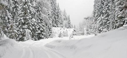 schneebedeckter Berg im Winter foto