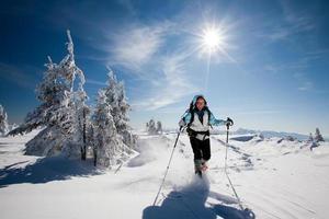 Wanderer in den Winterbergen