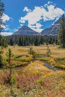 kahle Berg- und Herbstwiesen, Spiegelsee malerische Nebenstraße, Utah foto