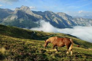 die Pyrenäen foto