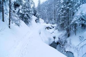 Winterstrom mit Schnee und Bäumen bedeckt foto
