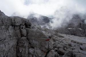 wilde Dolomiten Brenta foto