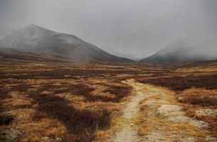 der Weg auf dem geheimnisvollen nebligen Bergplateau im Herbst.