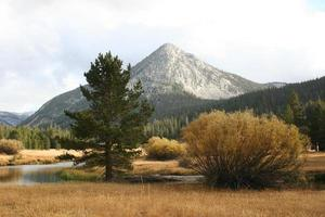 Potter Point, Yosemite foto