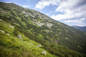 niedrige tatras berge, slowakei foto