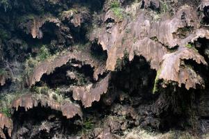 Steinbeschaffenheit auf Berg. foto