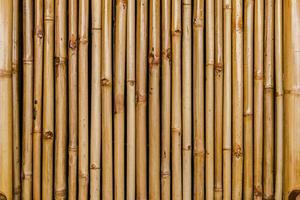 Bambuszaun Hintergrund