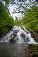 Wasserfall umgeben von Bäumen mit grünen Blättern, Alava, Spanien