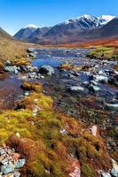 Fluss des Bergmoos foto