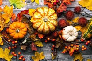 Herbsthintergrund mit Kürbissen, Blättern und Beeren