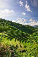 Landschaftsfoto von Reisterrassen in China foto