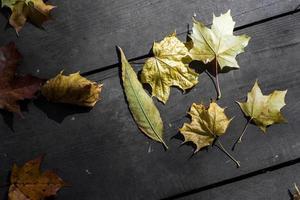 herbstliche Blätter auf Holzbrettern