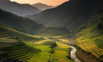 tropische Länder Vietnam. foto