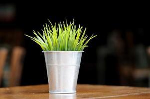 Gras im Blumentopf auf dem Tisch foto