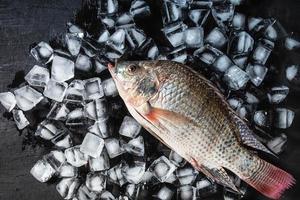 frischer Fisch auf Eis foto