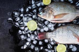 frische Tilapia-Fische auf Eis mit Zitronen foto