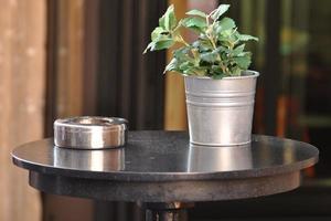 Eimer mit einer Pflanze und einem Aschenbecher auf dem Tisch.