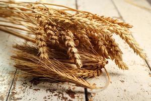 Weizen, Roggenohren foto