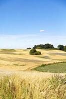 Sommerlandschaft von Feld und Wiesen und blauem Himmel foto