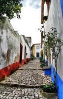 Obidos, Portugal foto