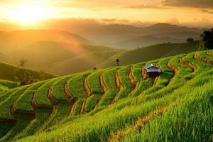 Reisterrassen mit Sonnenuntergangshintergrund bei Ban Papongpieng Chiangmai foto