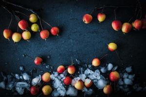 Äpfel im Schnee auf dem dunklen Hintergrund