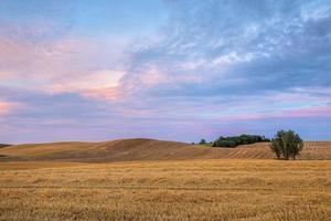 Landblick auf bebaute Felder