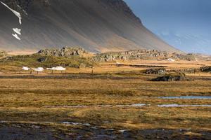 isländische Farm foto